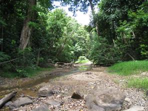 Lockhart River river
