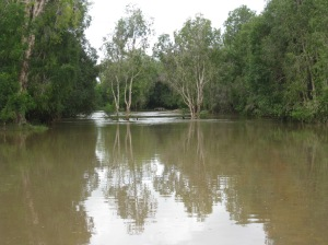 Flooded Creek at Kowanyama